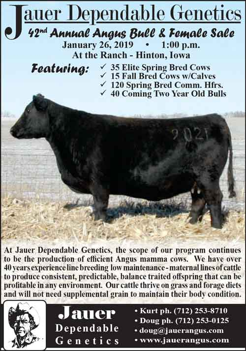 American Farming Publications Jauer Dependable Genetics www.jauerangus.com